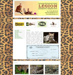 Питомник бенгальских кошек LEGION - сайт Бизнес